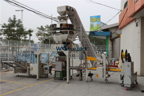 Fastener Weighing Machine carton line for nails